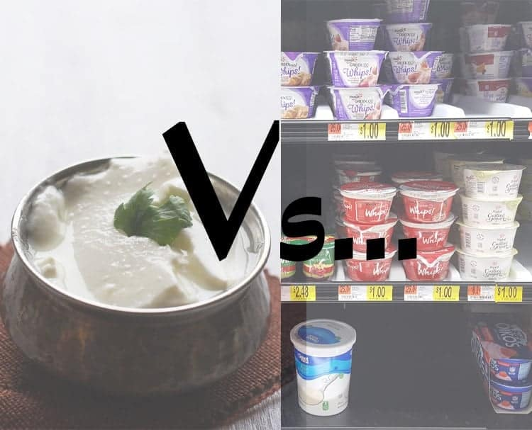 commercial grade yogurt with homemade yogurt / curd